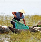 Unsustainable fishing practices blamed for dwindling catch in Lake Mainit