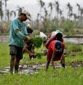 In Cateel, typhoon survivors start anew, hope for prosperity