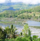 SPECIAL REPORT: Moratorium on fish cage operations sought to save Lake Sebu from dying
