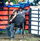 Cowboy Tradition