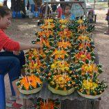 FEATURE: On the Lao side, Naga fireballs remain…