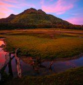 Good morning, Mt. Apo