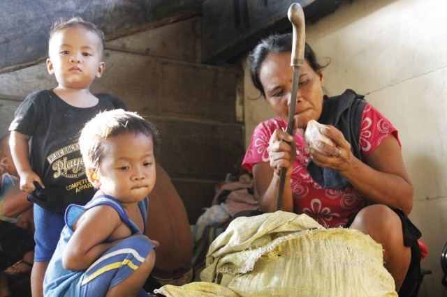 A mother prepares sweet potatoes at the town gym in Marihatag, Surigao del Sur on Friday (02 October 2015). She and her sons are among the 1,000 individuals that fled Barangay Mahaba, Marihatag on Oct. 1 due to an ongoing military operation in their place. MindaNews photo by H. Marcos C. Mordeno