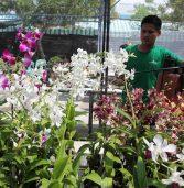 Agro Trade Fair