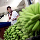 Banana Congress